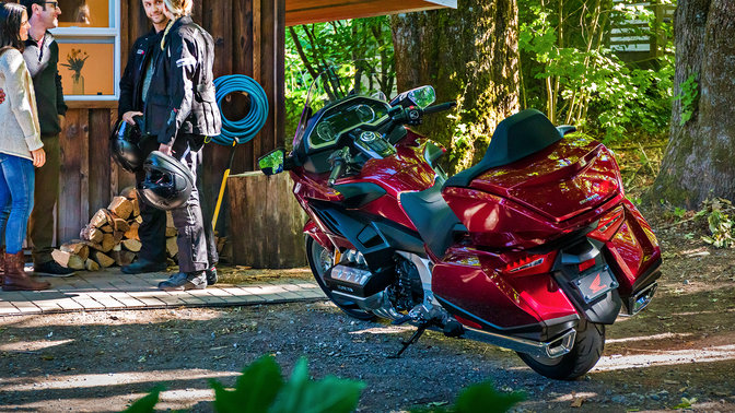 Rear three-quarter facing Honda Gold Wing, forest location.